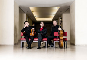 Altenberg Trio Wien © Nancy Horowitz